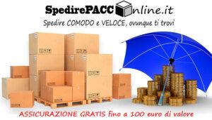 Spedizione ASSICURATA GRATIS fino 100 euro di valore del contenuto